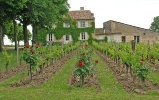 french wine class